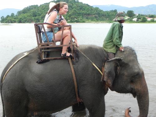 Đắk Lắk báo động trong 20 năm tới có nguy cơ hết voi
