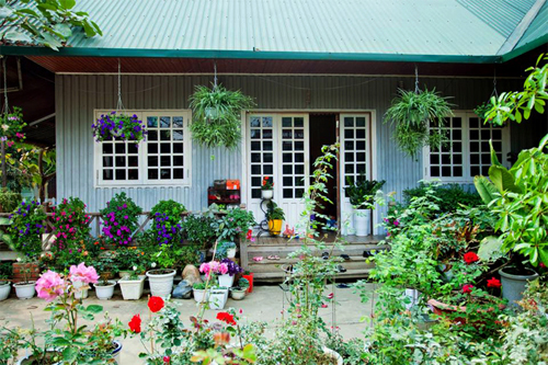 Những ngôi nhà với kiến trúc giản dị nhưng vẫn đẹp như mơ