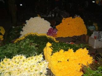 Muôn hoa đua sắc tại các chợ Đêm ở Hà Nội