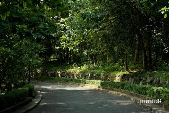 'Biệt thự trắng' ở Vũng Tàu
