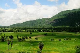 Cùng ngắm cảnh An Giang với khung cảnh 'hương đồng cỏ nội'