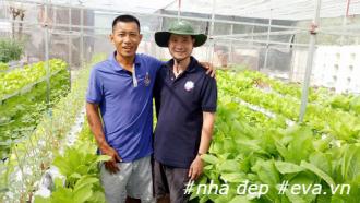 8X Sài Thành thành công với mô hình trồng rau sạch