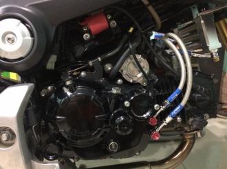 Màn thay đổi đột phá và uy lực của Honda MSX đầy phong cách