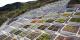 Sững sờ vườn trăm bậc dựa lưng vào núi, hướng mặt ra biển