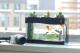 Bể cá kị đặt dưới bàn thờ, trong phòng ngủ